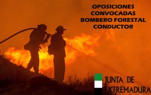 Convocan Pruebas Selectivas Bombero Forestal Conductor